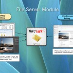 File Server and Digital Asset Management features combined