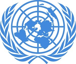 Digital Asset Management Customer - United Nations